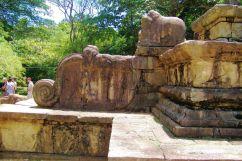 Polonnaruwa (19)