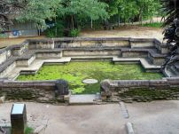 Polonnaruwa (59)