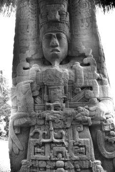 Quirigua (11)