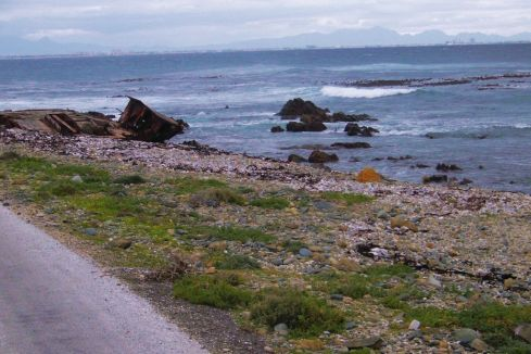 Robbeneiland 06
