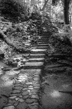 Ruinas de Copan (10)