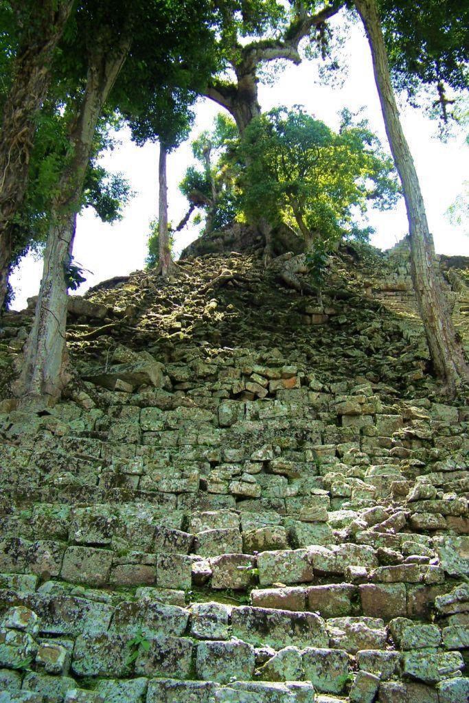 Ruinas de Copan (111)