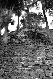 Ruinas de Copan (112)