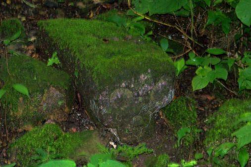 Ruinas de Copan (13)