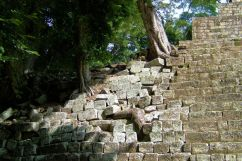 Ruinas de Copan (20)