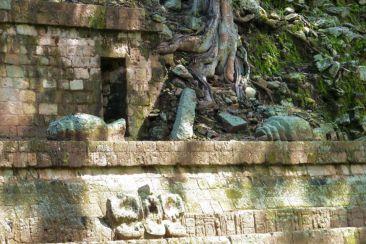 Ruinas de Copan (24)