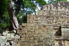 Ruinas de Copan (28)