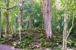 Ruinas de Copan (4)