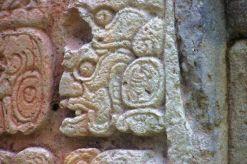 Ruinas de Copan (42)