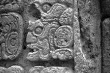 Ruinas de Copan (43)