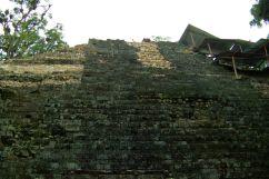 Ruinas de Copan (50)