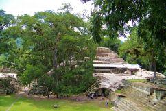 Ruinas de Copan (71)