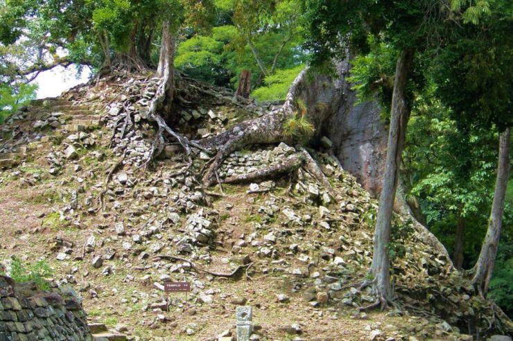 Ruinas de Copan (78)