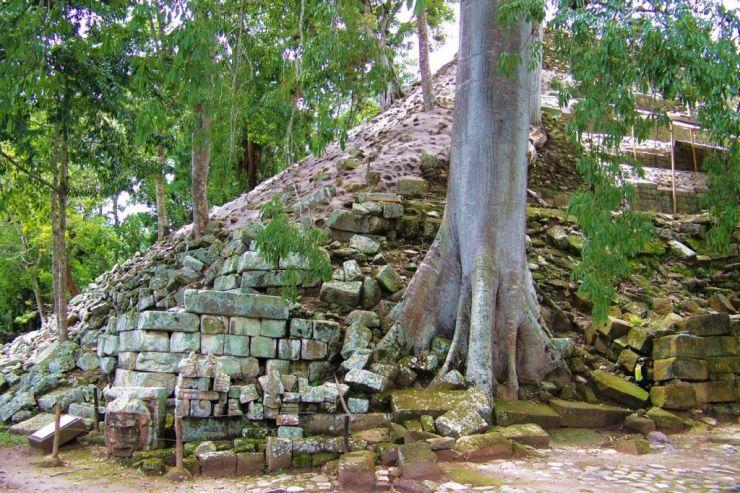 Ruinas de Copan (84)