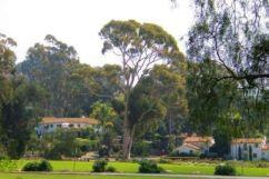 Santa Barbara 02