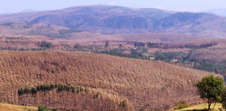 Swaziland (9)