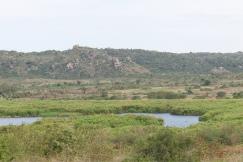 Tanzania divers (4)
