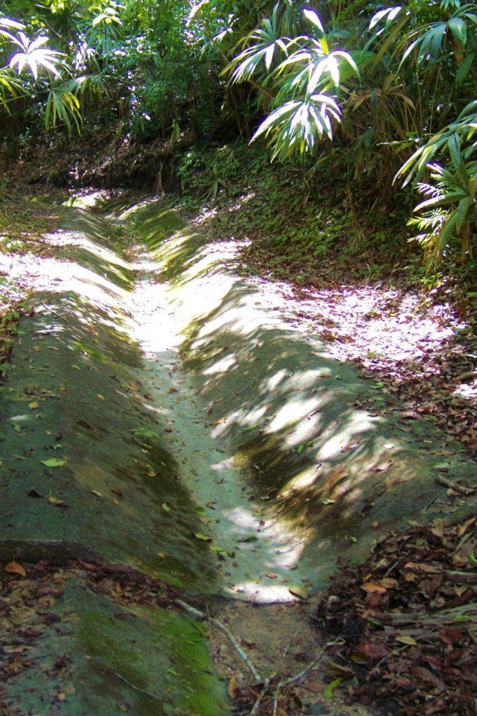 Tikal (11)