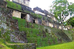 Tikal (22)