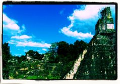 Tikal (28)