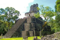 Tikal (41)