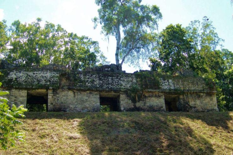 Tikal (50)