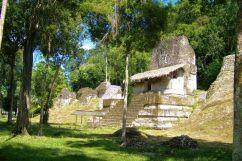Tikal (51)
