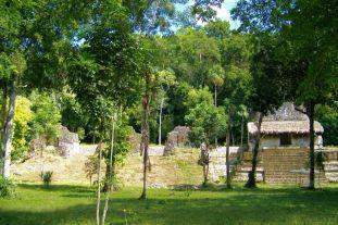 Tikal (54)