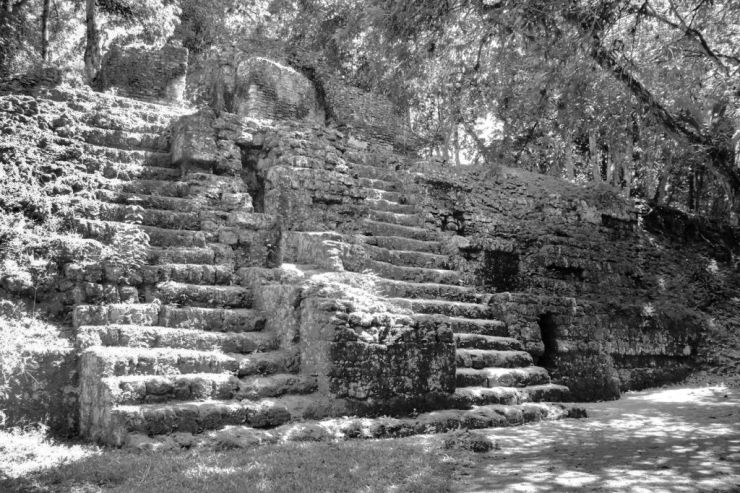 Tikal (57)