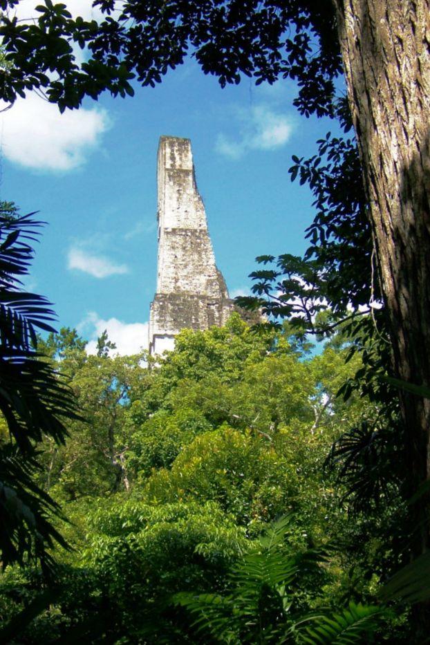 Tikal (58)
