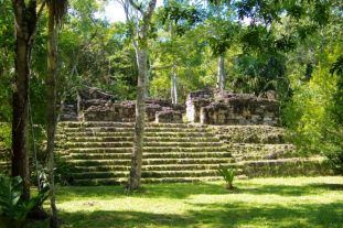Tikal (60)