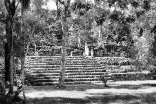Tikal (61)