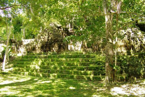 Tikal (63)
