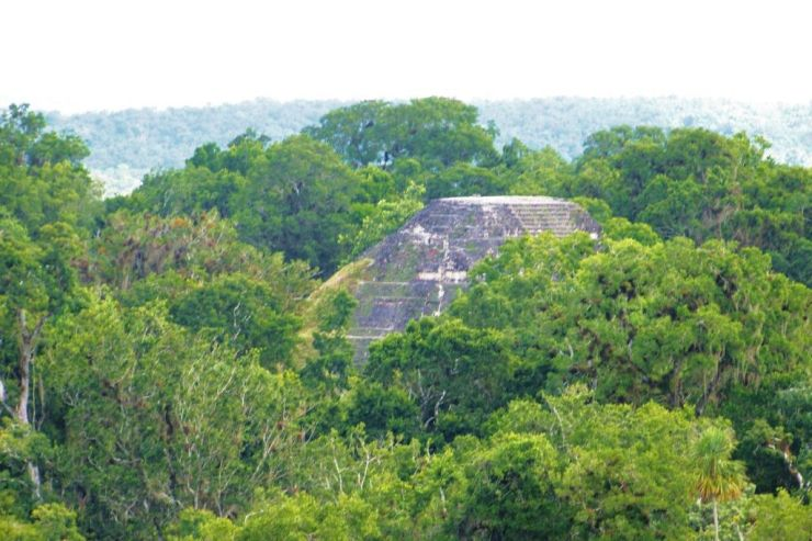 Tikal (67)