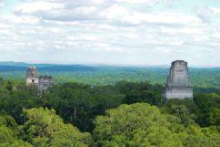 Tikal (68)