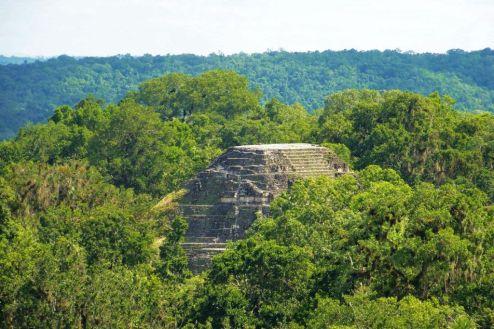 Tikal (71)