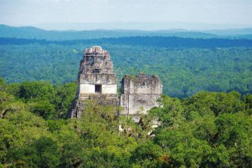 Tikal (73)