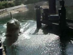 Los Angeles, CA - Universal Studios (train ride part 2)