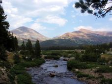 Yosemite NP (115)