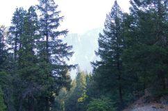 Yosemite NP (16)