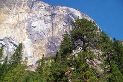 Yosemite NP (19)
