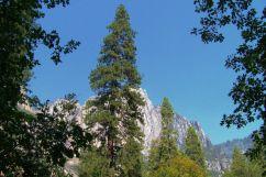 Yosemite NP (23)