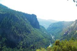 Yosemite NP (29)