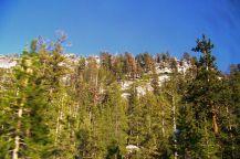 Yosemite NP (58)