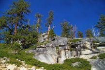 Yosemite NP (59)