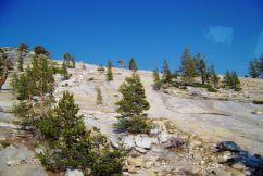 Yosemite NP (61)