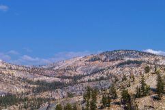 Yosemite NP (62)