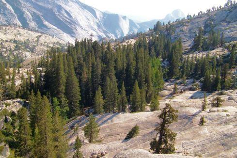 Yosemite NP (66)