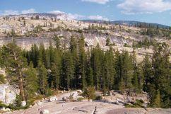 Yosemite NP (68)