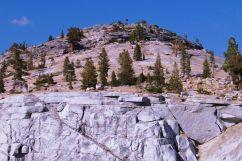 Yosemite NP (69)